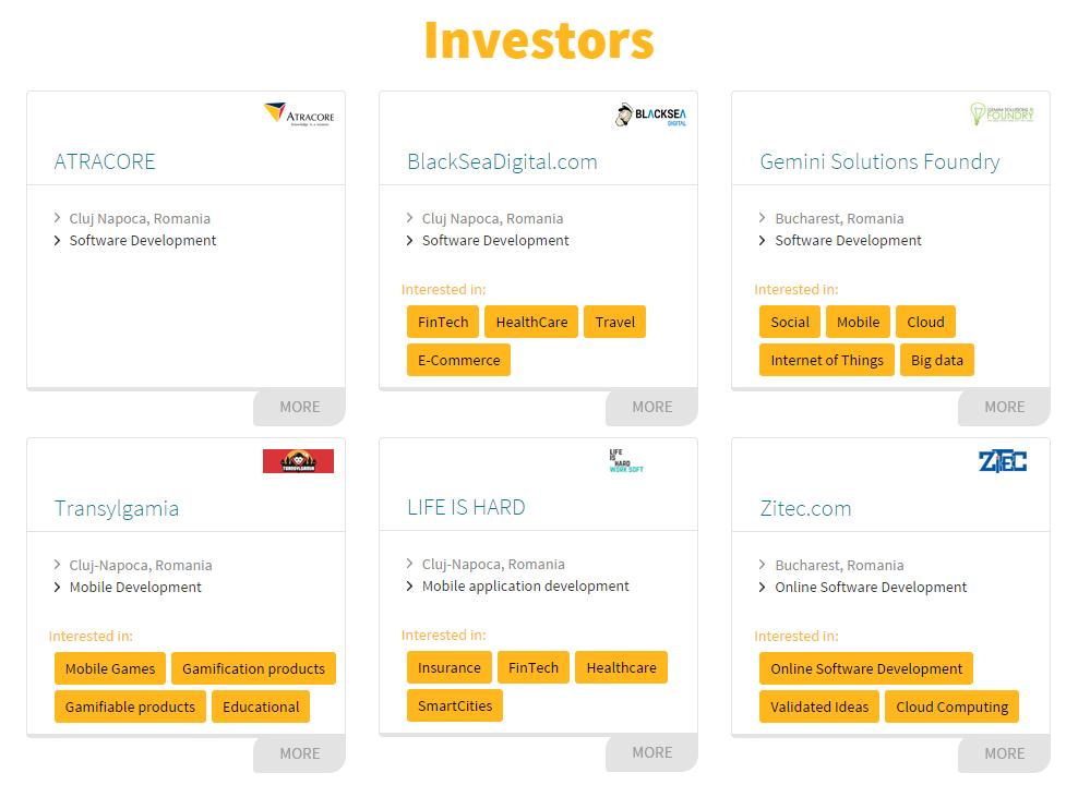 investors pitch